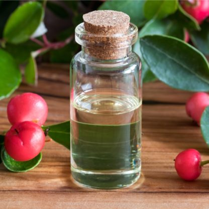 Wintergreen berries and oils