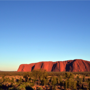 Uluru Rock: Outback Muscle Rub
